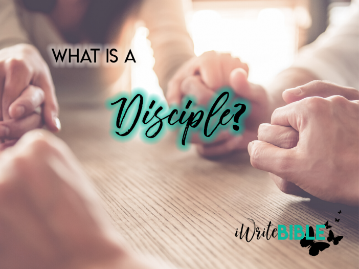 What is a Disciple Image