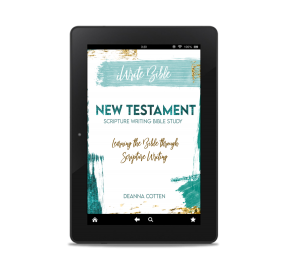 NT Scripture Bible Study e-book