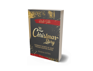 The Christmas Story 3d Image